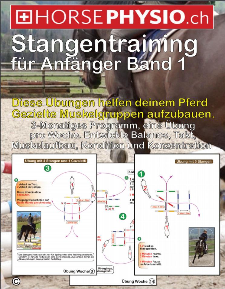 Stangentraining für Anfänger Band 1