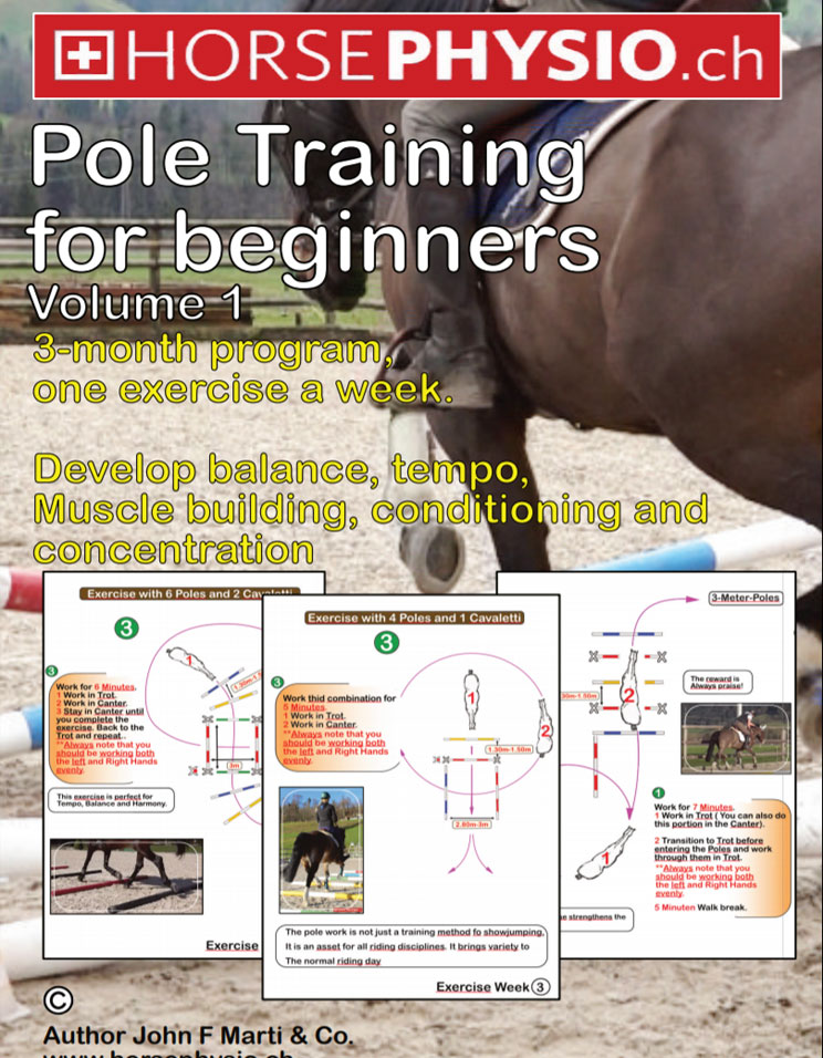 Pole Training for beginners Volume 1