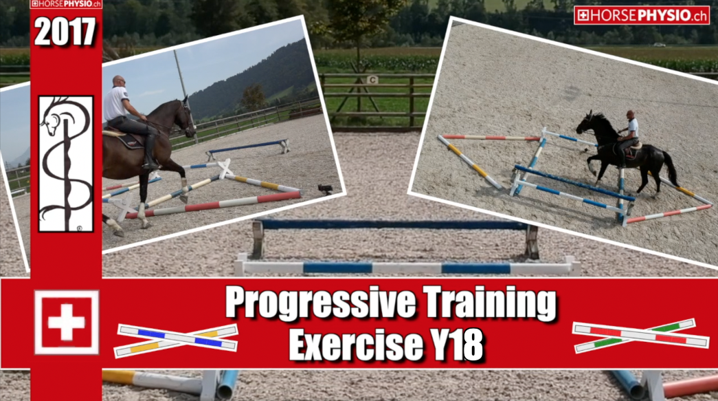 Progressives Training Exercise Y18