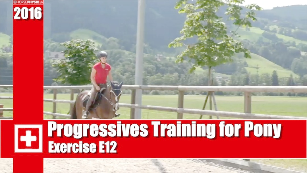 Progressives Training for Pony