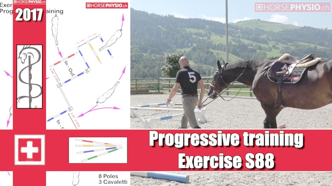 Progressiv Training Exercise S88