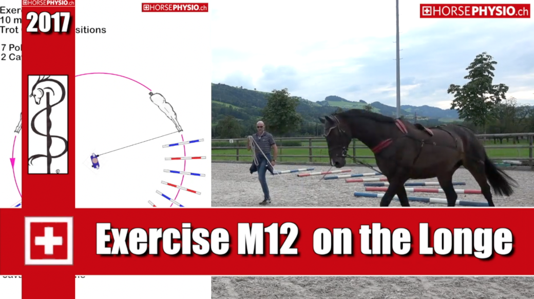 Exercise M12 Transitions