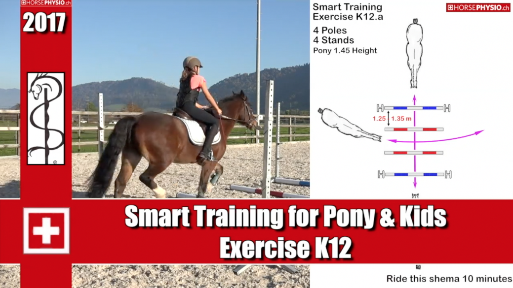 Smart training for Pony & Kids