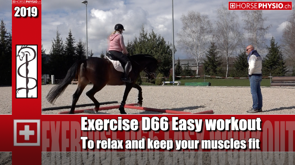 Exercise D66 To relax and keep muscles fit