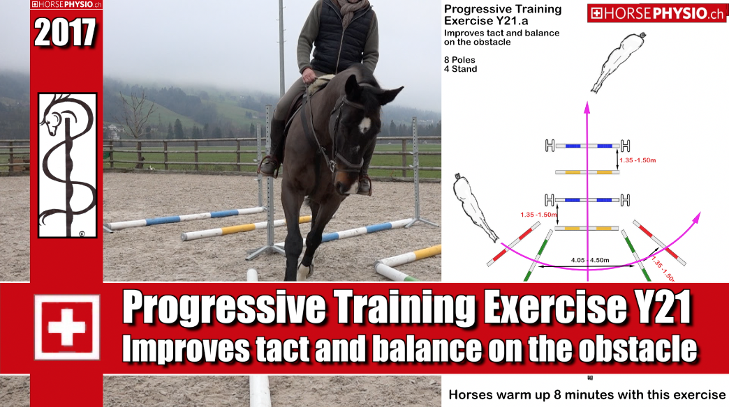 Progressive Training exercise Y21