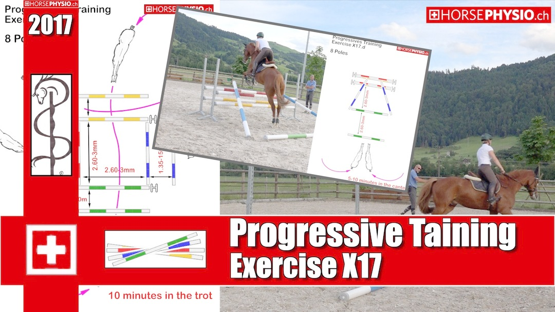 Progressive Training X17