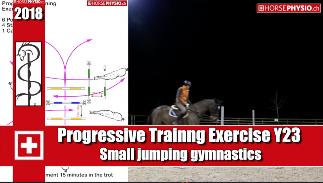 Progressive Training Exercise Y23