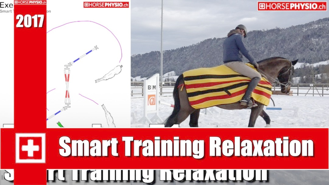 Smart Training Relaxation