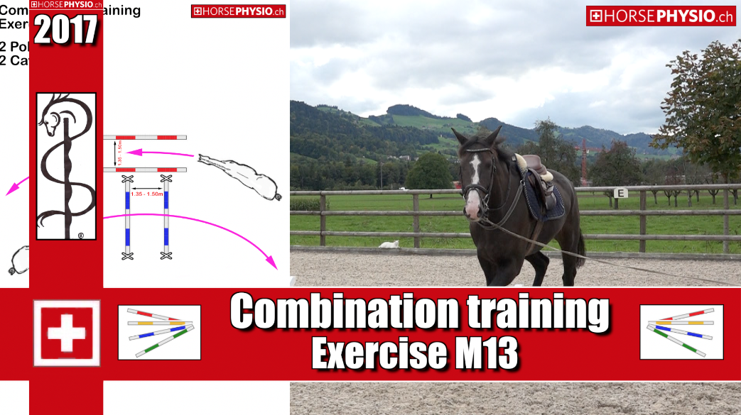 Combination Training Exercise M13