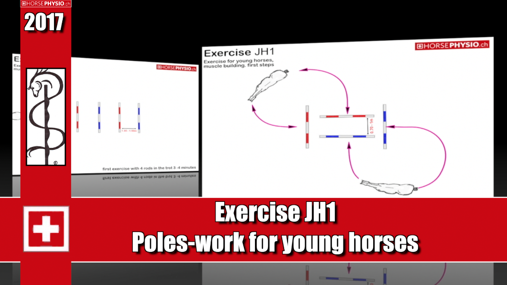 Exercise JH1 For young horses