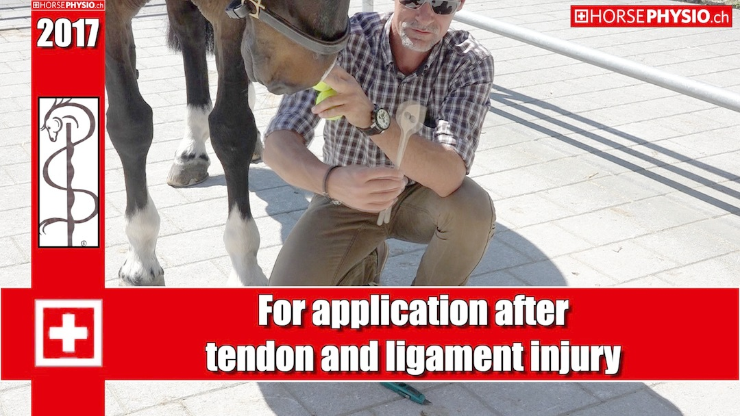 Accidents with tendons and ligaments: how can i prevent and massage it to supoort the convalescence