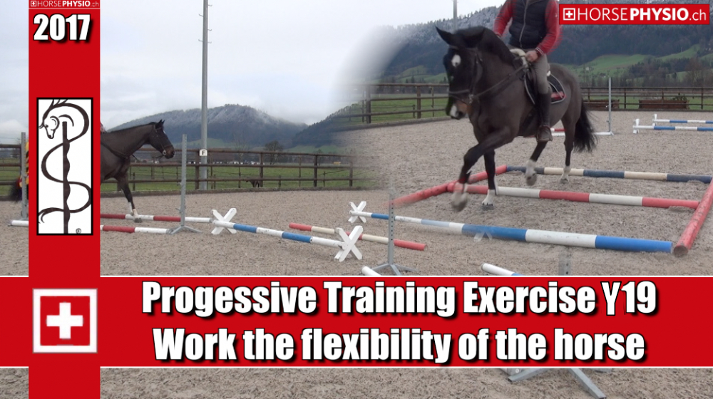 Progressive training Exercise Y19