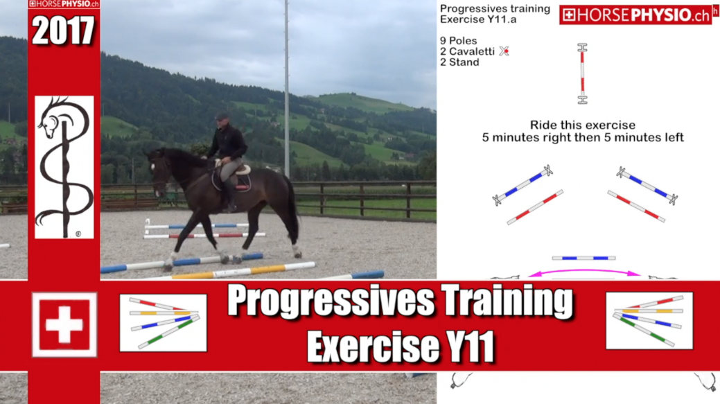 Progressive training Y11