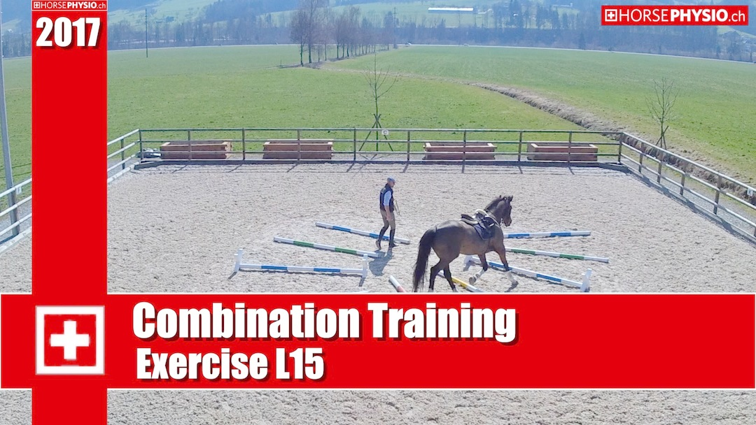 Combination Training Exercises L15