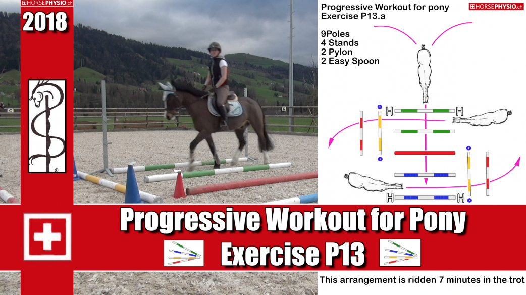 Progressive Training for Pony and other