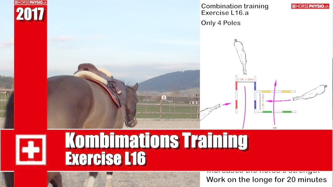 Exercise L16 Combination Training