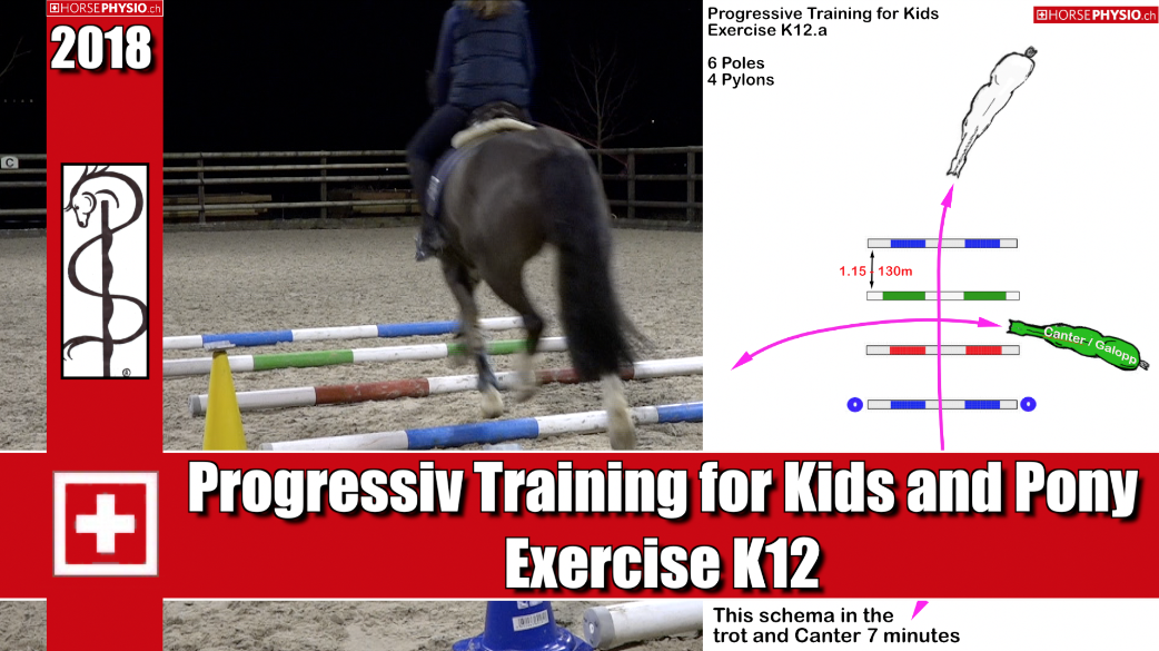 Progressive Training for Kids K12