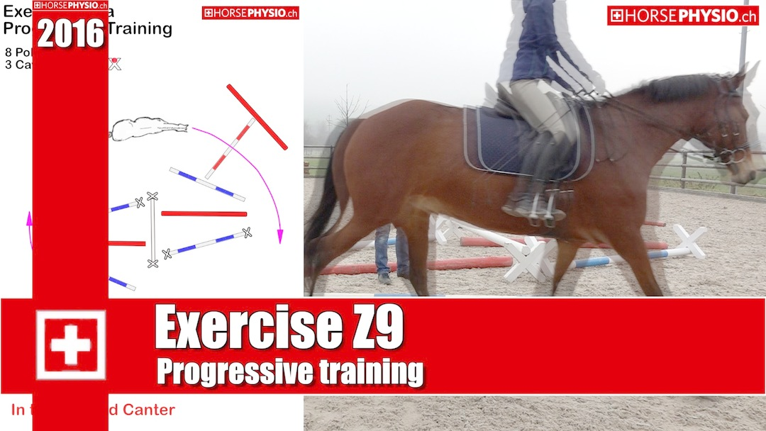 Progressives Training Exercises Z9
